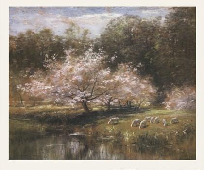 Sheep Grazing Under Apple Blossoms by John Appleton Brown art print