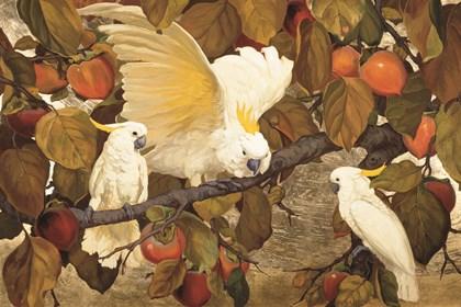Persimmons & Cockatoos by Jessie Arms Botke art print