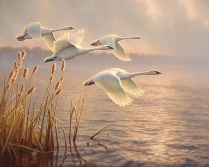 Elegant Migration by Greg Alexander art print