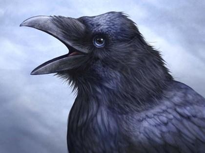 Raven Totem by Patrick LaMontagne art print